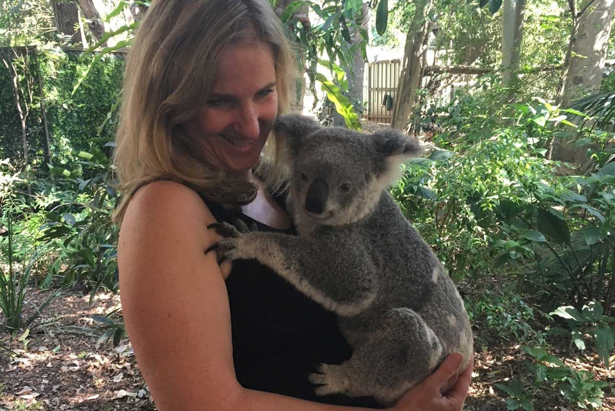 Koala encounter in a sanctuary near Brisbane, Australia with GeoEx