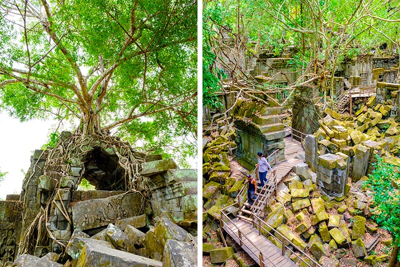 Prasat Beng Mealea temple ruins in Siem Reap Province, Cambodia