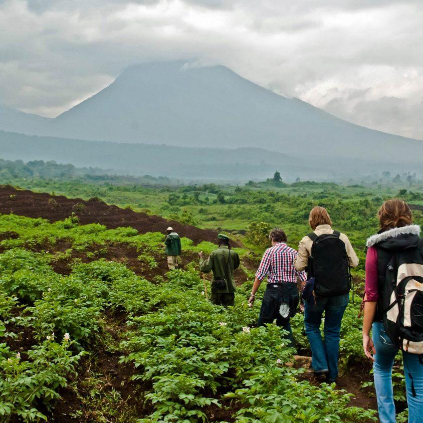 Hiking in Virunga National Park in the Democratic Republic of Congo