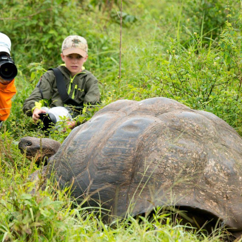 Mother and son photographing a Galapagos tortoise on Santa Cruz, Galapagos