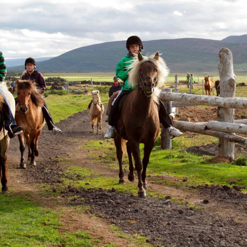 Children riding horses in northern Iceland