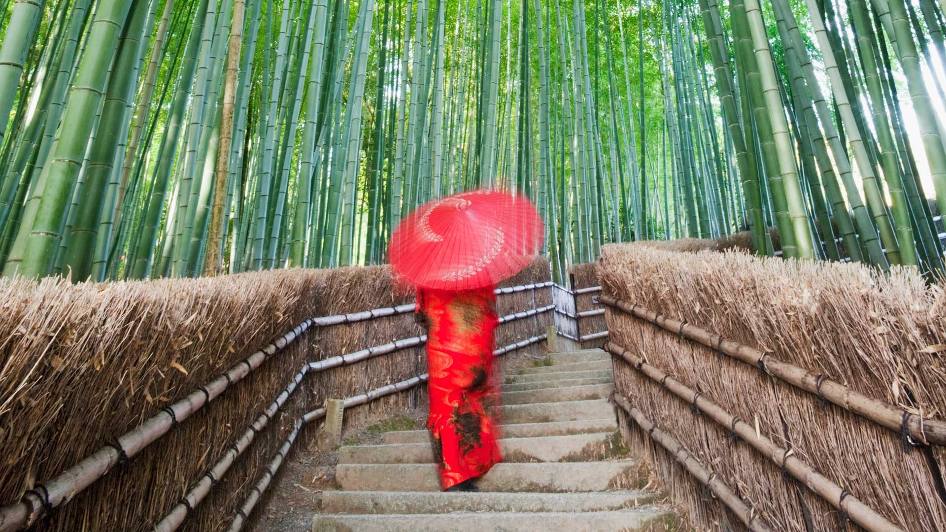 Woman walking through Arashiyama Bamboo Forest in Kyoto, Japan with GeoEx