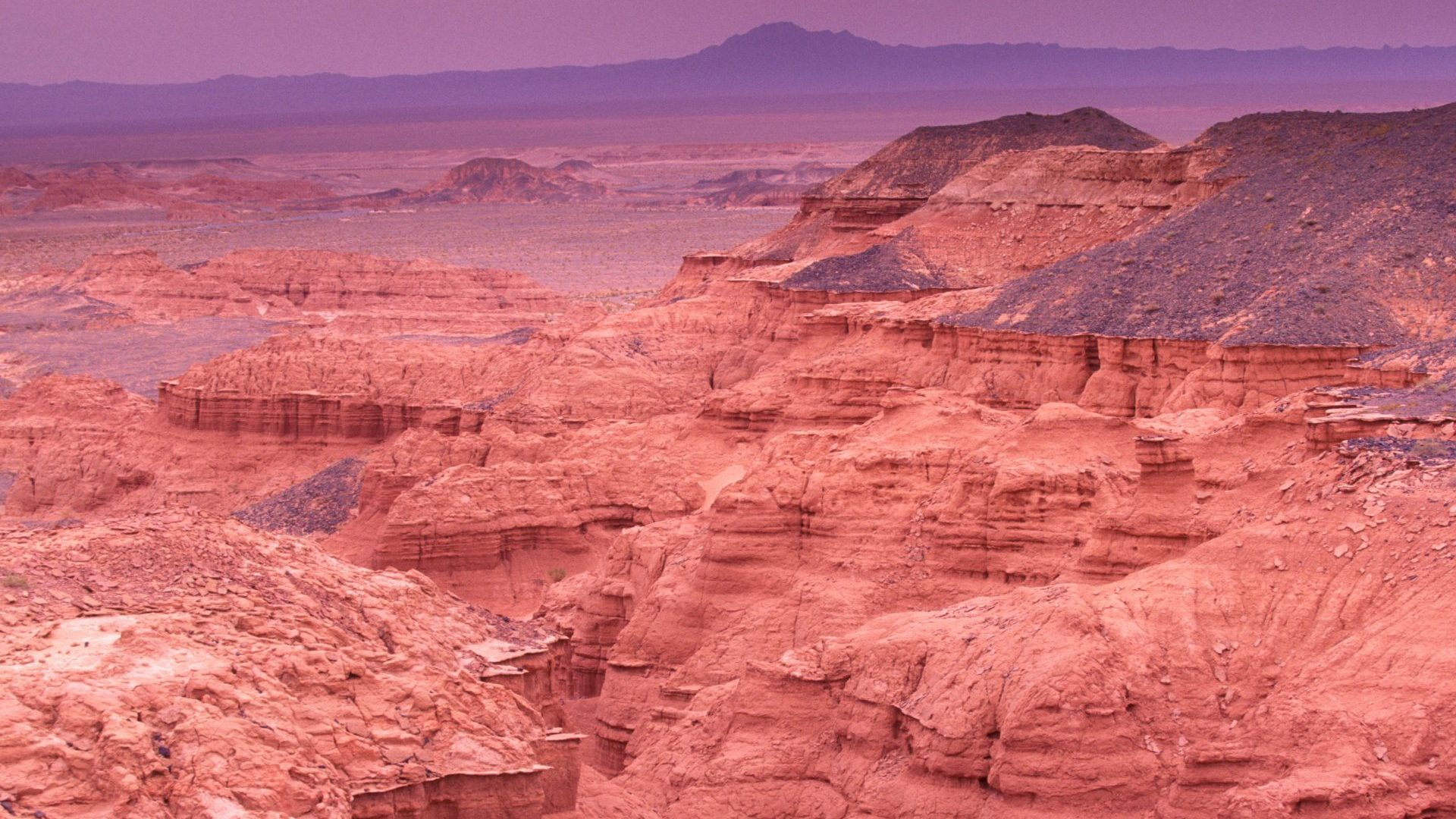 Flaming Cliffs in the Gobi Desert, Mongolia with GeoEx
