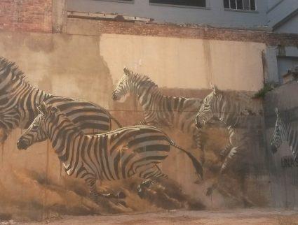 Artist Faith47 zebra street art piece in Cape Town, South Africa
