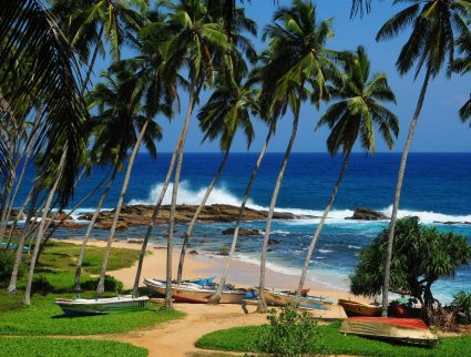 Boats and palm trees in front of a secluded cove near Tangalle, Sri Lanka