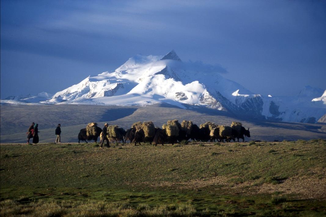 Himalaya mountain range in Tibet by Vassi Koutsaftis