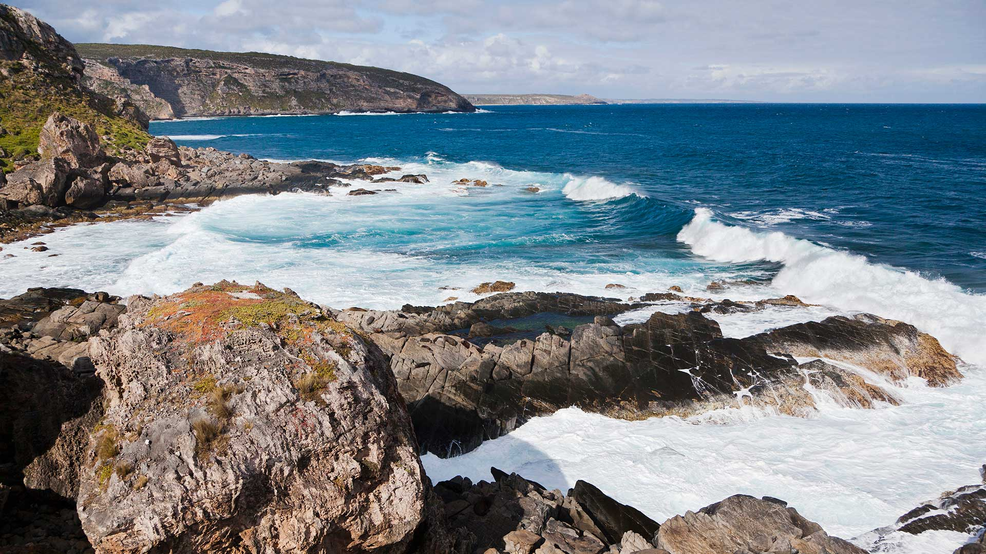 The cliff line of Cape du Couedic, in the Flinders Chase National Park on Kangaroo Island, Australia