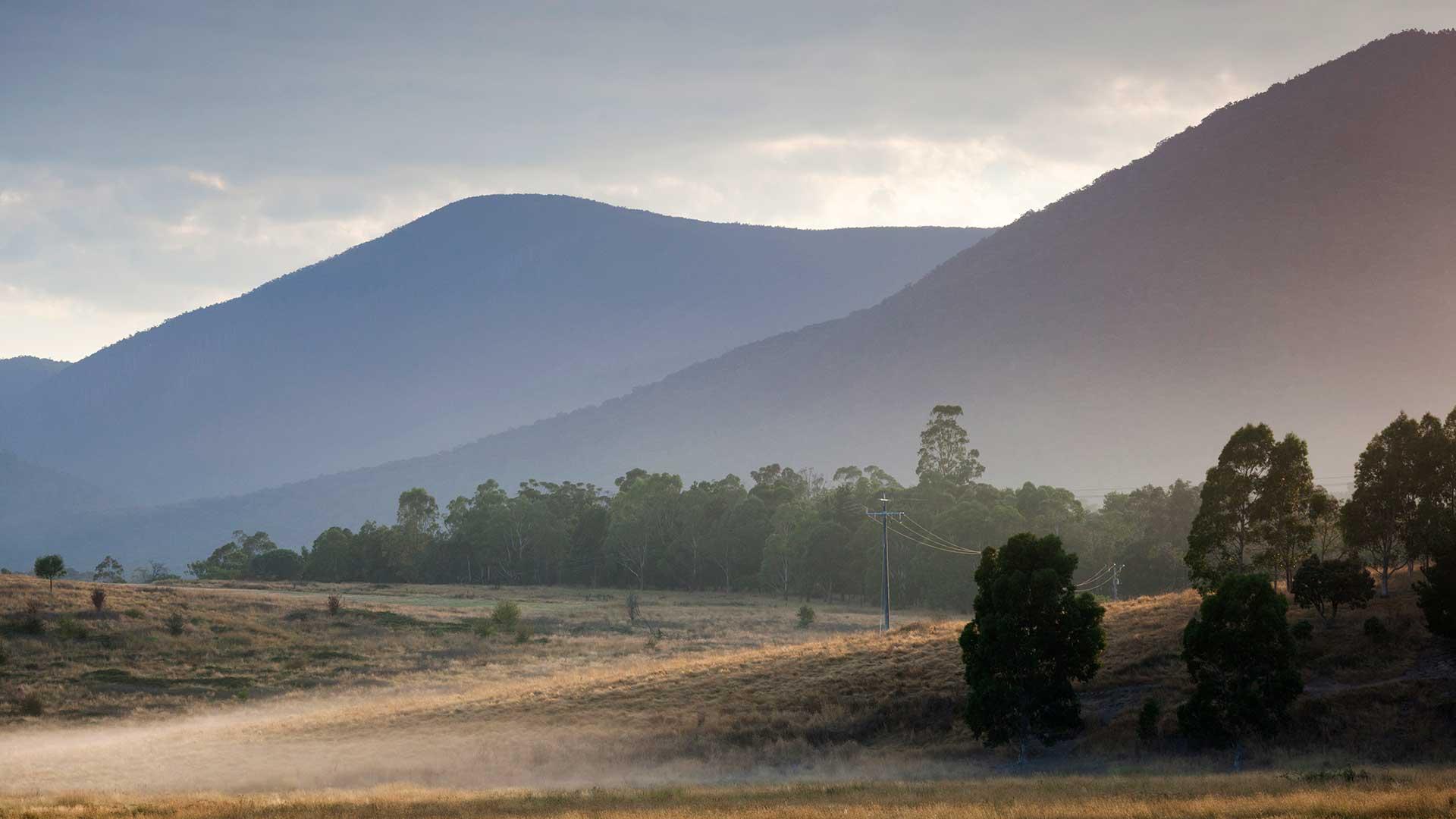 Yarra Valley, Healesville