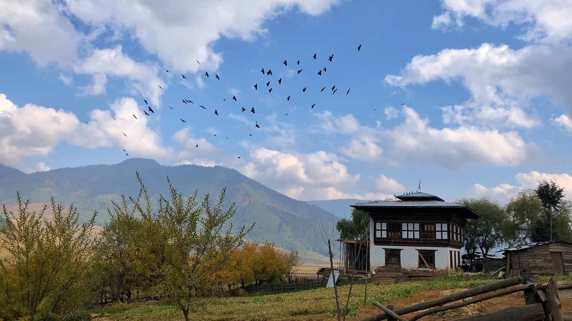 Bhutan, blue skies over temple