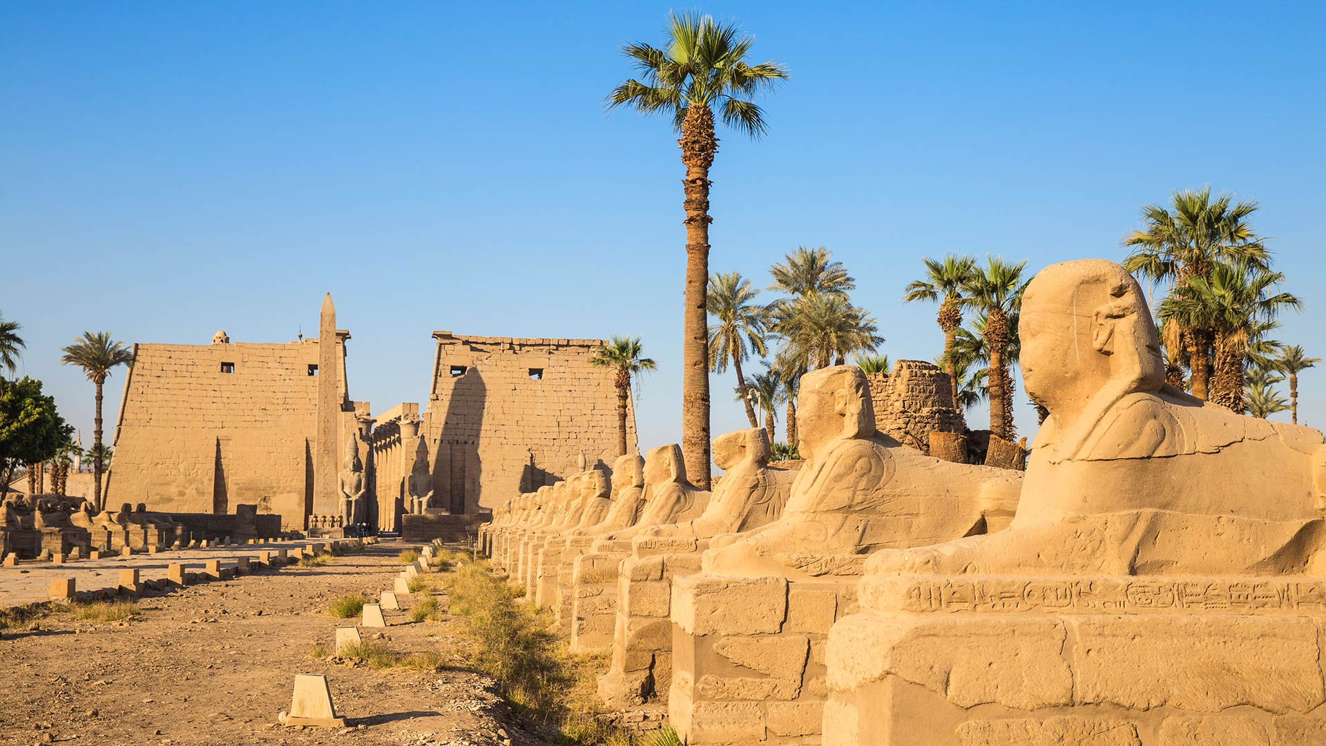The Avenue of the Sphinxes and the entrance to Luxor Temple in Egypt