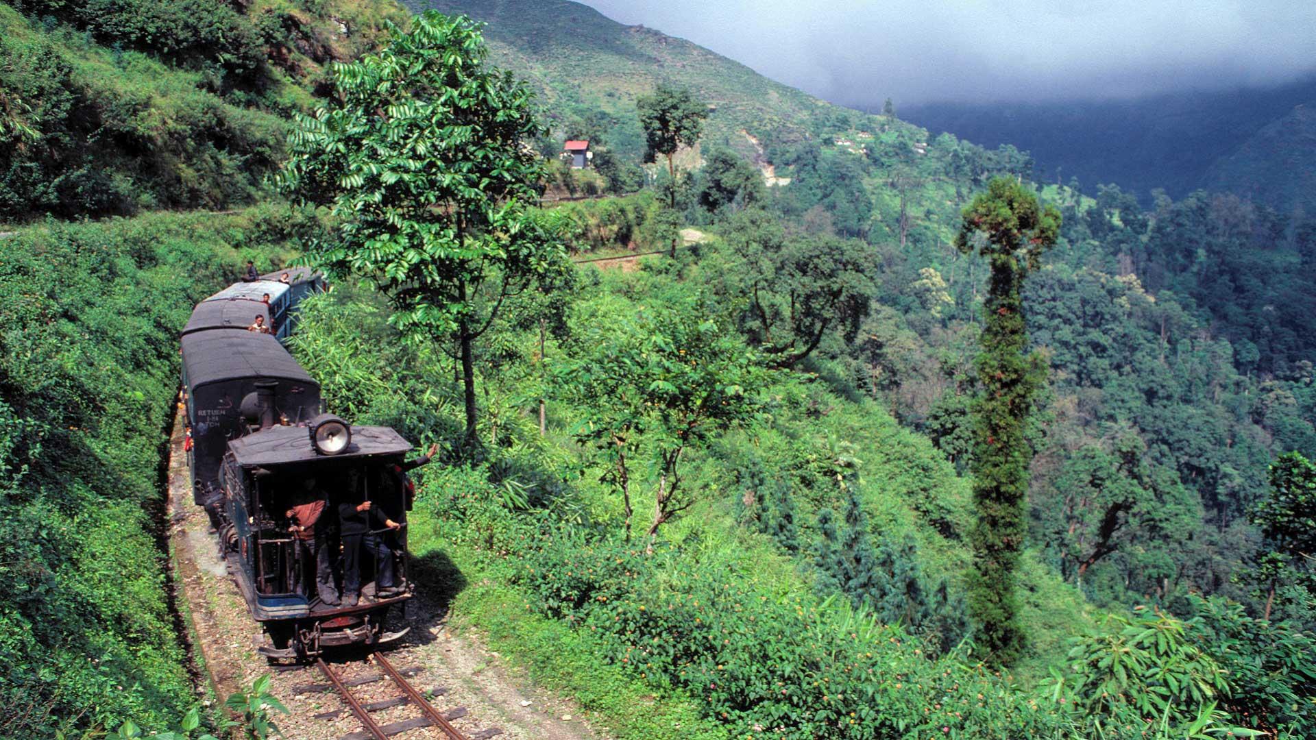 The Darjeeling Himalayan Railway, a World Heritage Site, cuts through the lush hillsides of Darjeeling, India with GeoEx.