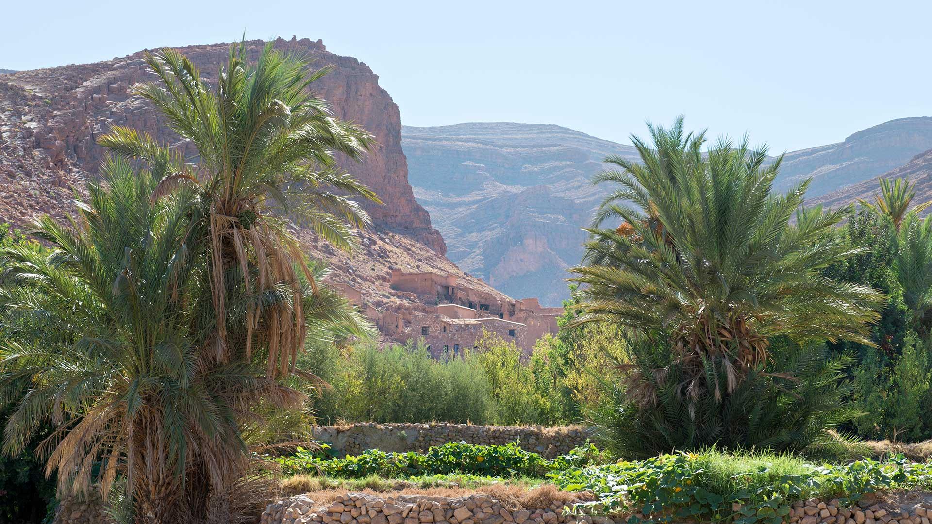 Riad La Maison Rouge scenery