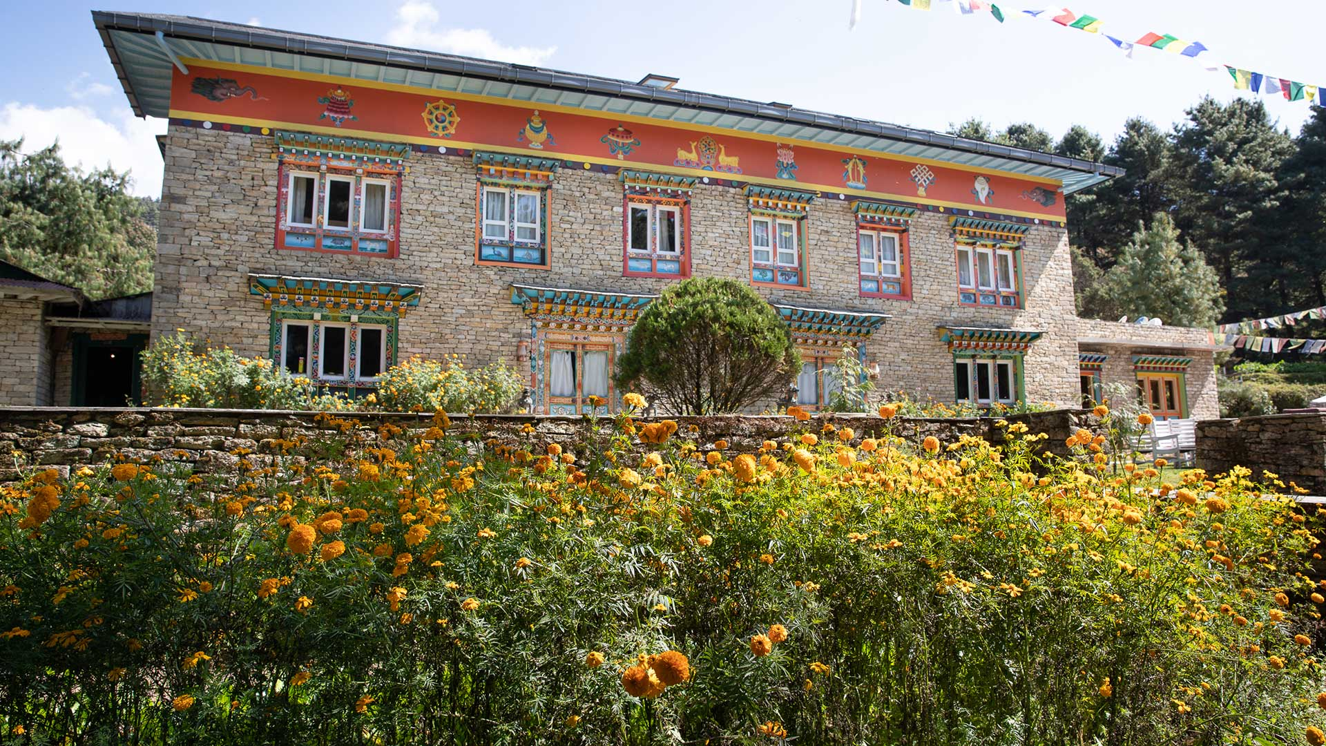 Exterior and flowers of The Happy House