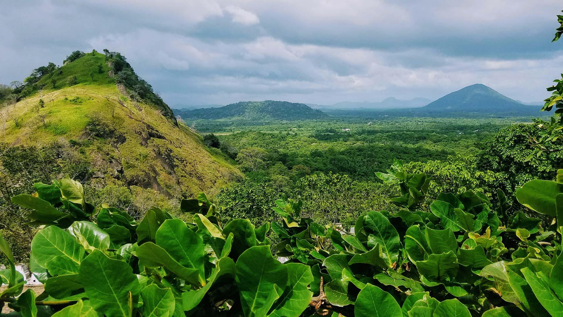 Scenic views of tea country, Sri Lanka