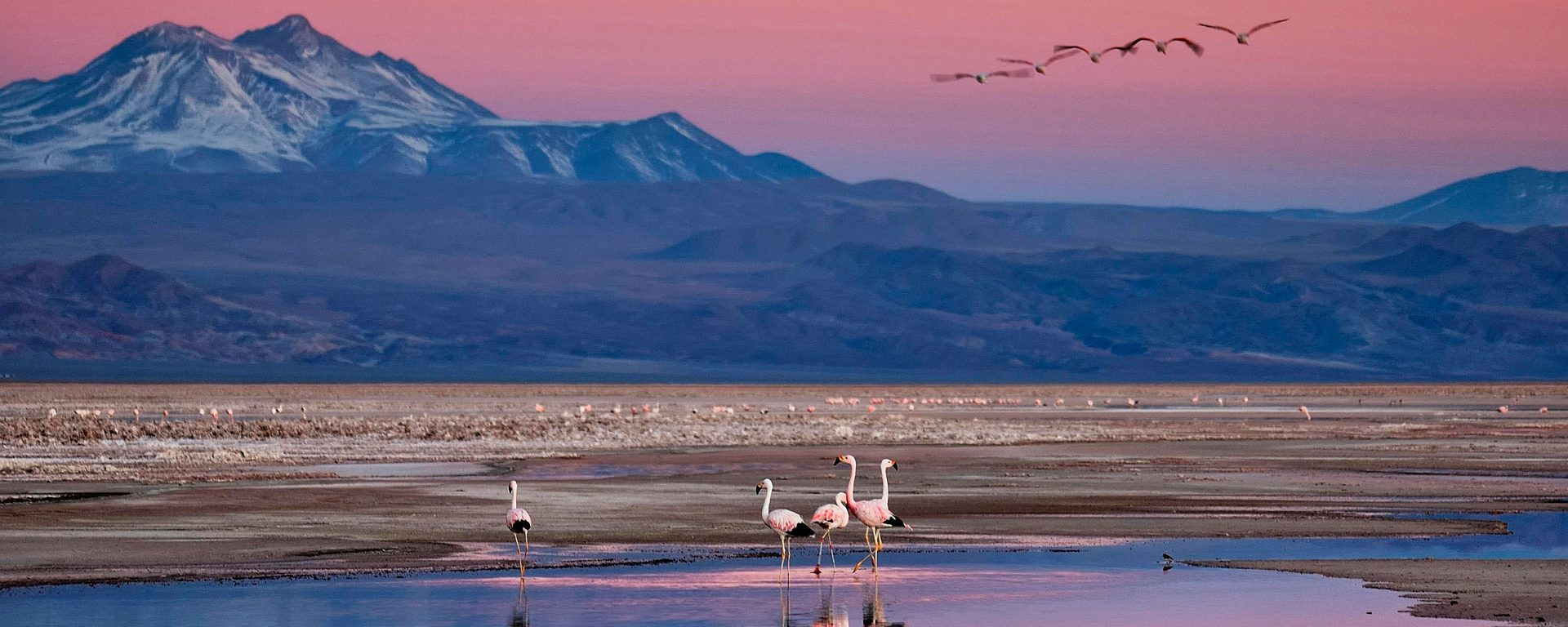 Mountain and lake with flamingos at sunset, Chile