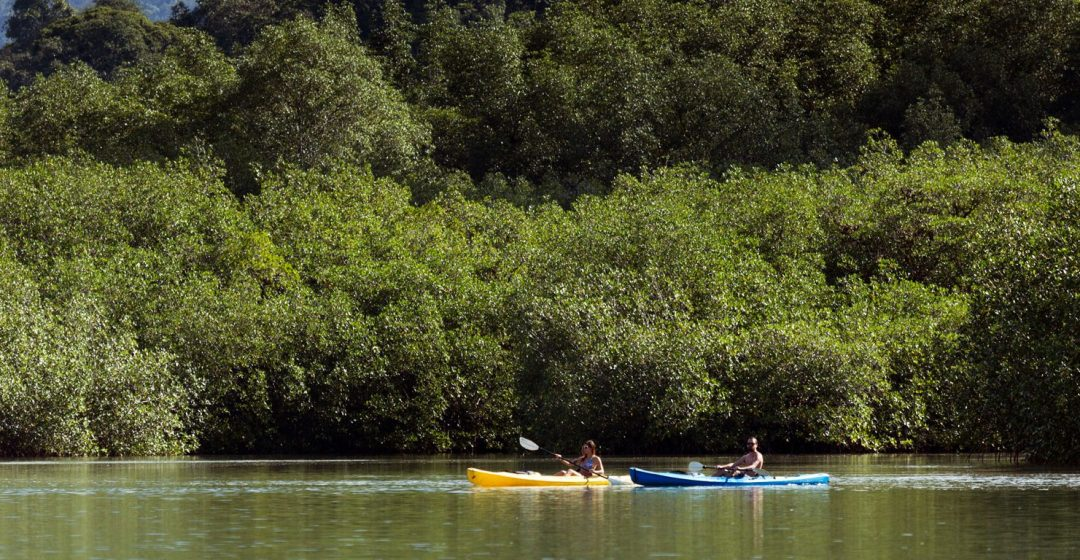 Kayakers on a river in Piedras Blancas National Park, Puntarenas, Costa Rica