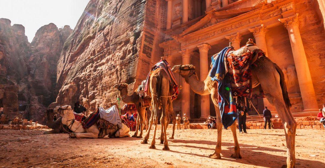 Camels in front of El Khazneh, Petra, Jordan