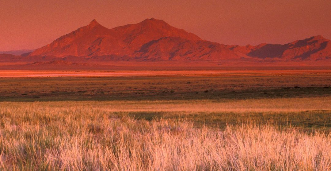 Mountain landscape and grass in the Gobi Desert, Mongolia