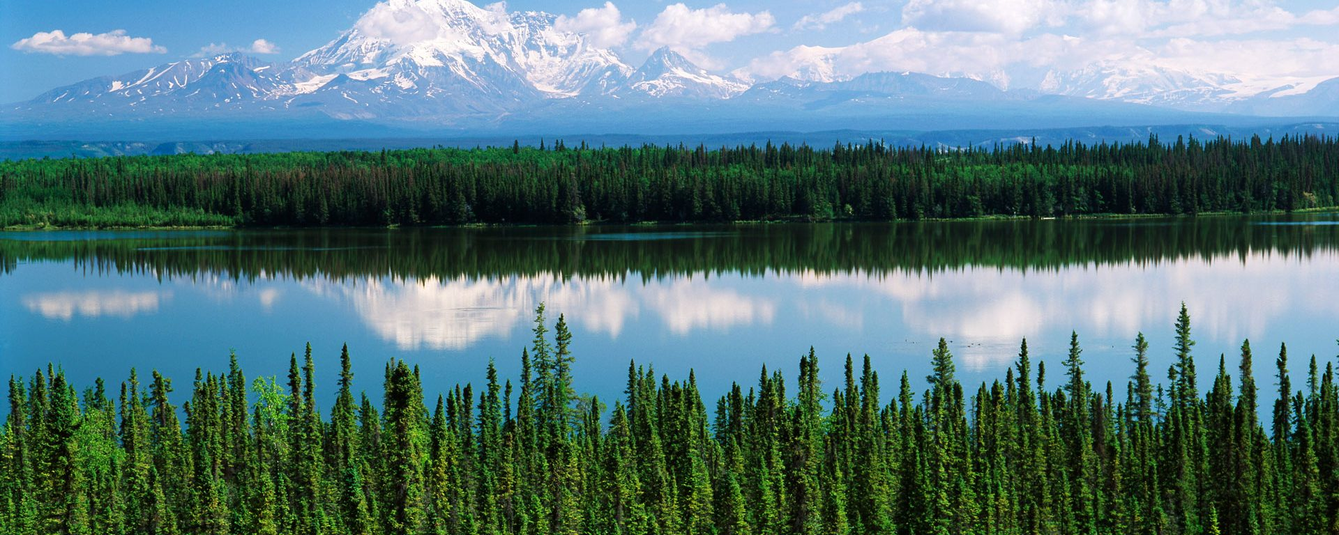 USA, Alaska, Willow lake and Mt Wrangell in Wrangell, St. Elias National Park