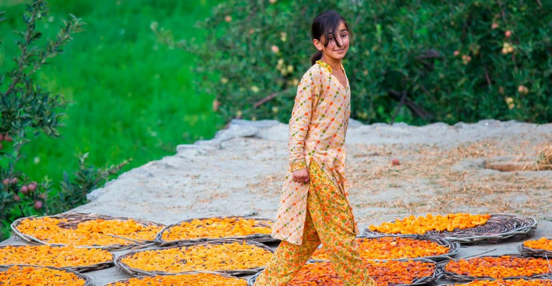Smiling girl on rooftop, drying apricot fruit, Hunza, northern Pakistan
