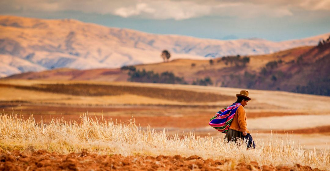 Farmer walking home at sunset, Sacred Valley, Peru