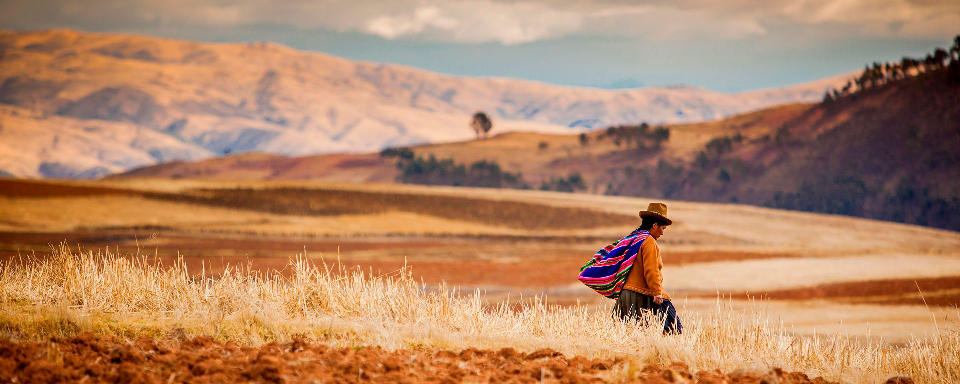 Farmer walking home at sunset, Sacred Valley, Peru