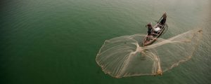 Myanmar, Mandalay, fisherman casting net on Irrawaddy River