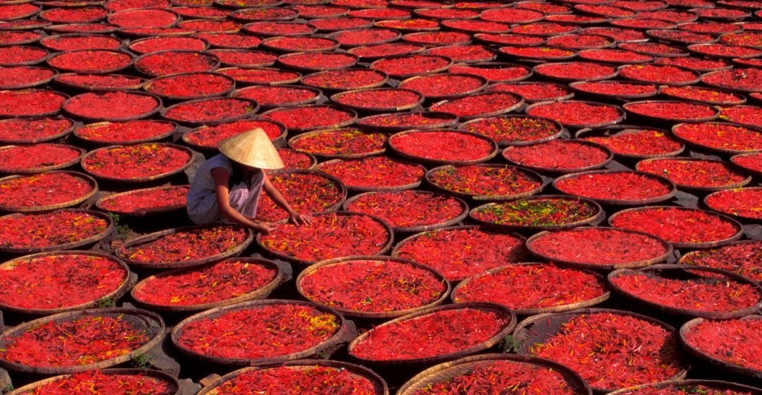 Candy drying in baskets under the sun, Vietnam
