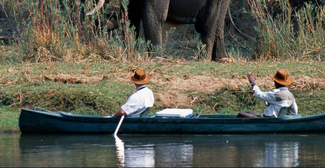 Canoe safari along the Chifungulu Channel, Zambia