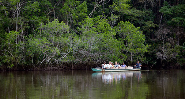 Tourists viewing wildlife in a canoe along Napo River in the Amazon, Ecuador