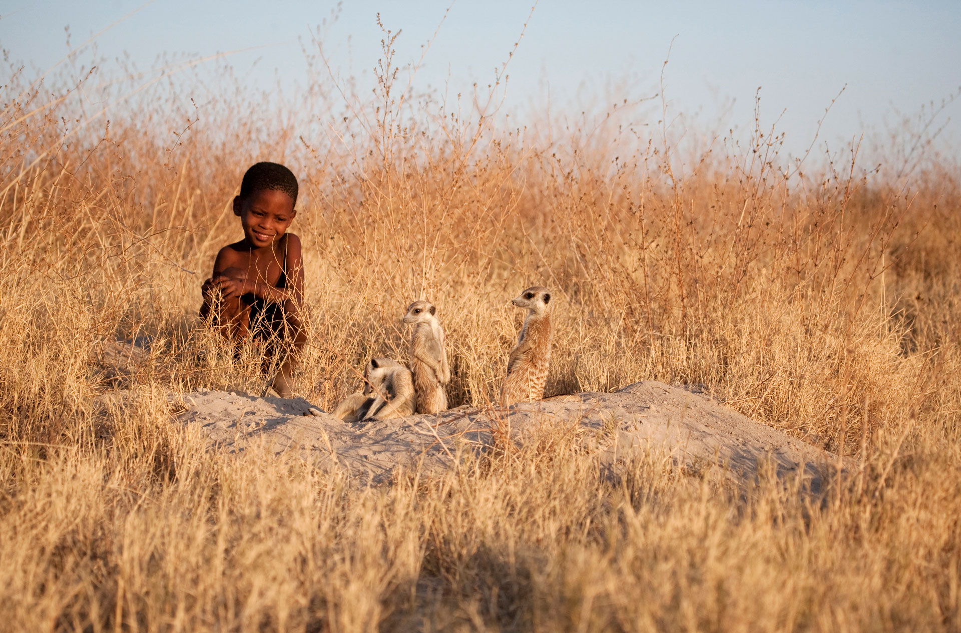Botswana, a bushman child watches a family of meerkats by the entrance to their burrow.