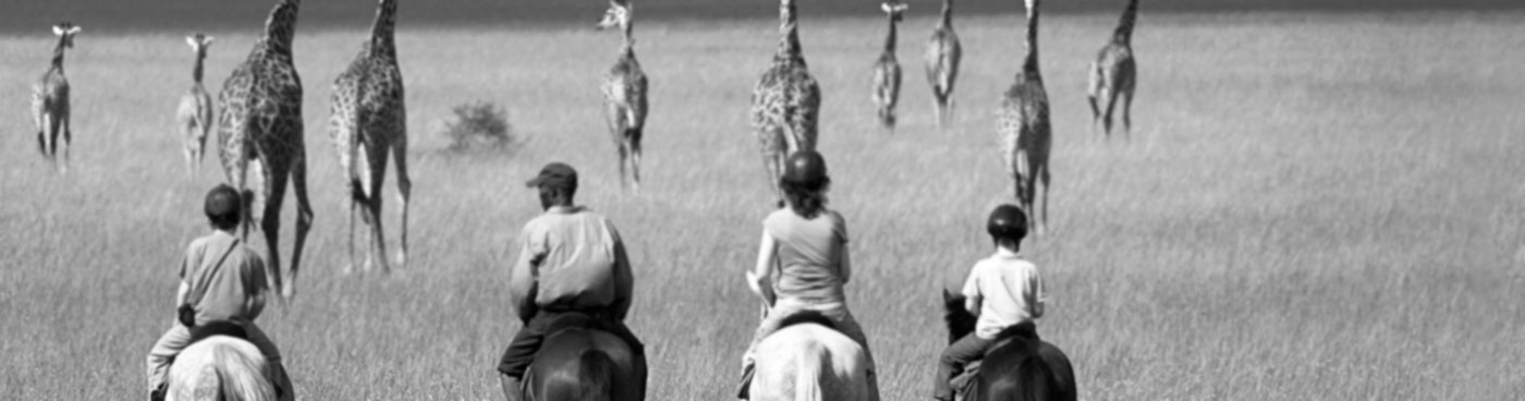 A family rides horses towards giraffes in the Chyulu Hills, Kenya