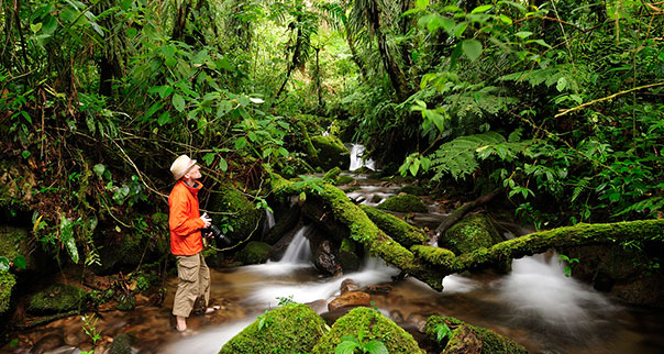Photographer wading in creek at Parque Nacional de Amistad, Panama