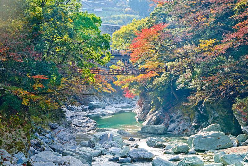 Kazurabashi vine bridge on Shikoku Island, Japan