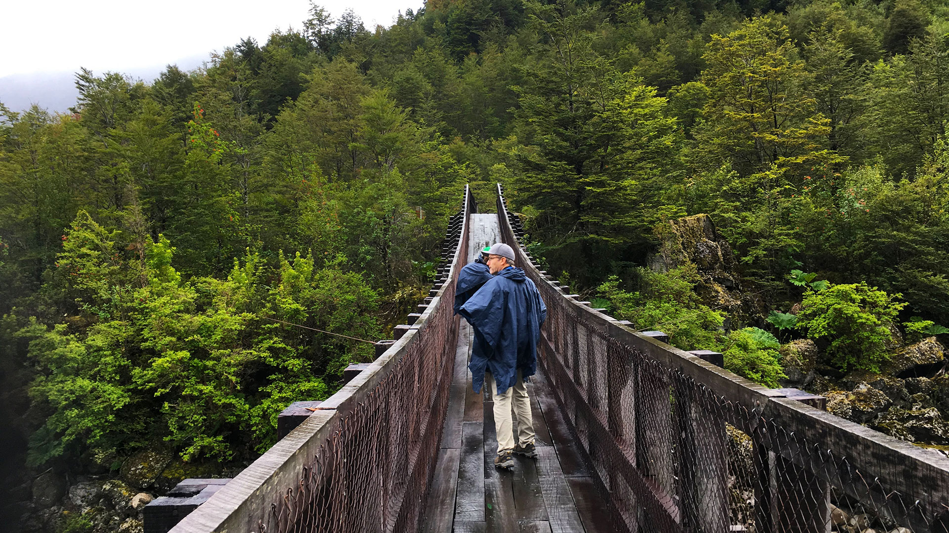 Hiker crossing a bridge in Queulat National Park