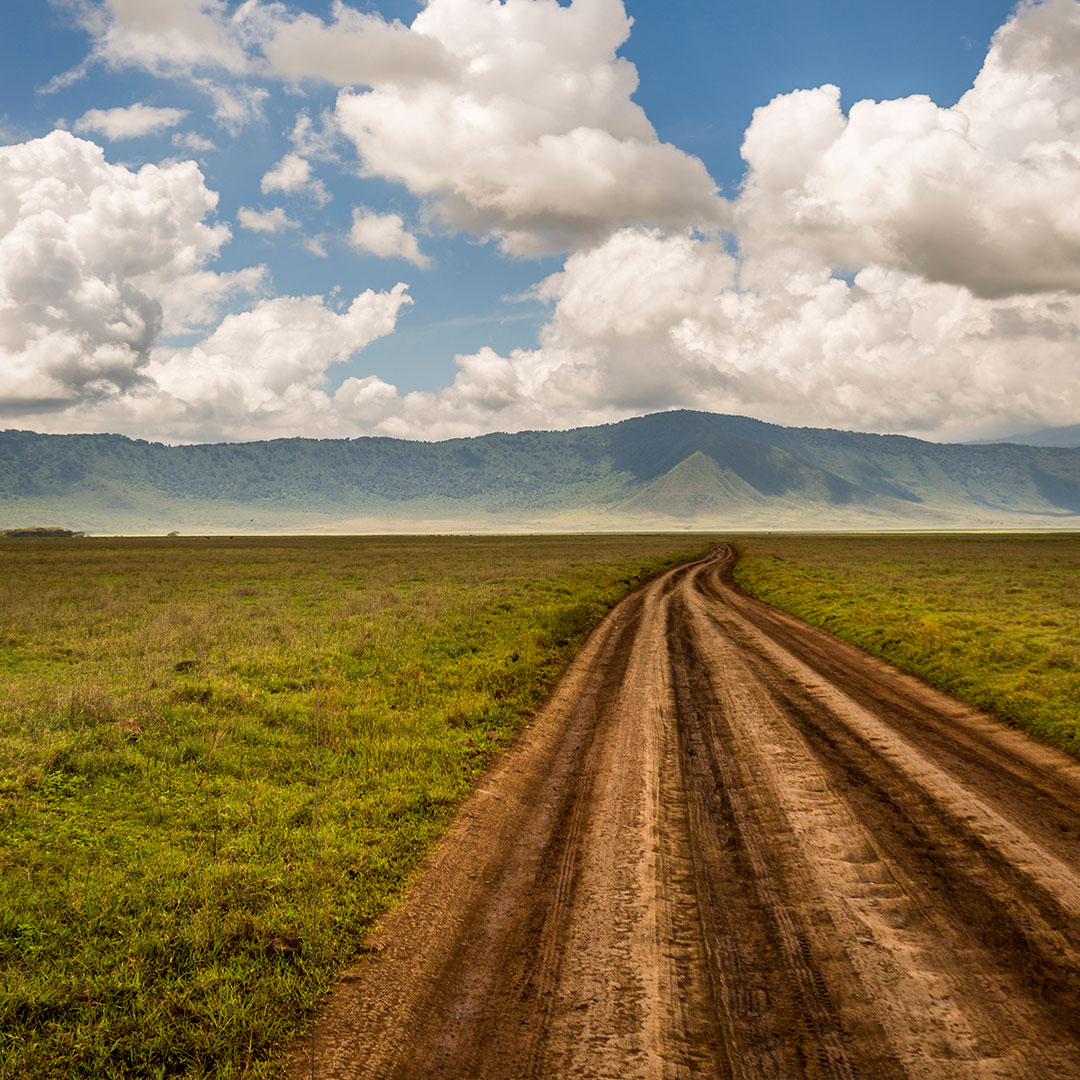 Open road in the Ngorongoro Crater, Tanzania