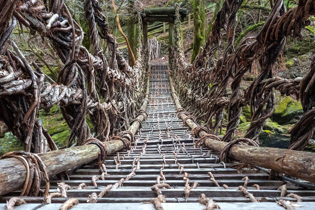Vine bridge in Japan