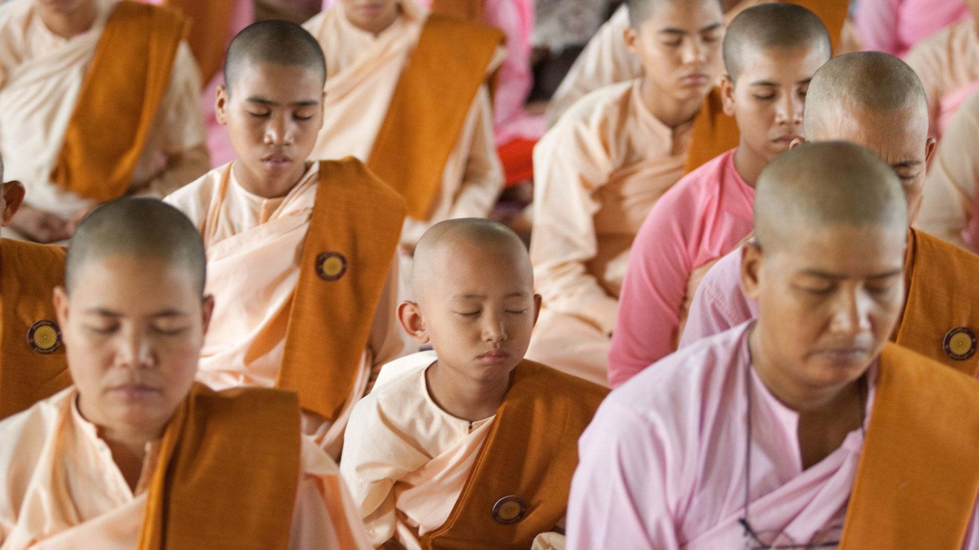 Buddhist nuns in Myanmar