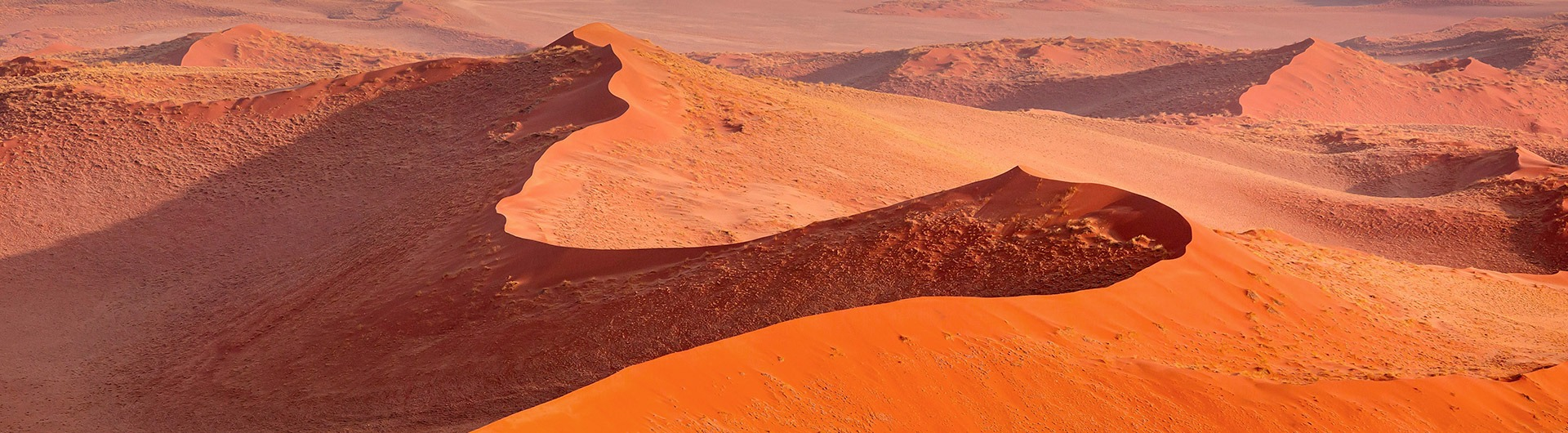 Ochre-colored sand dunes in Namibia