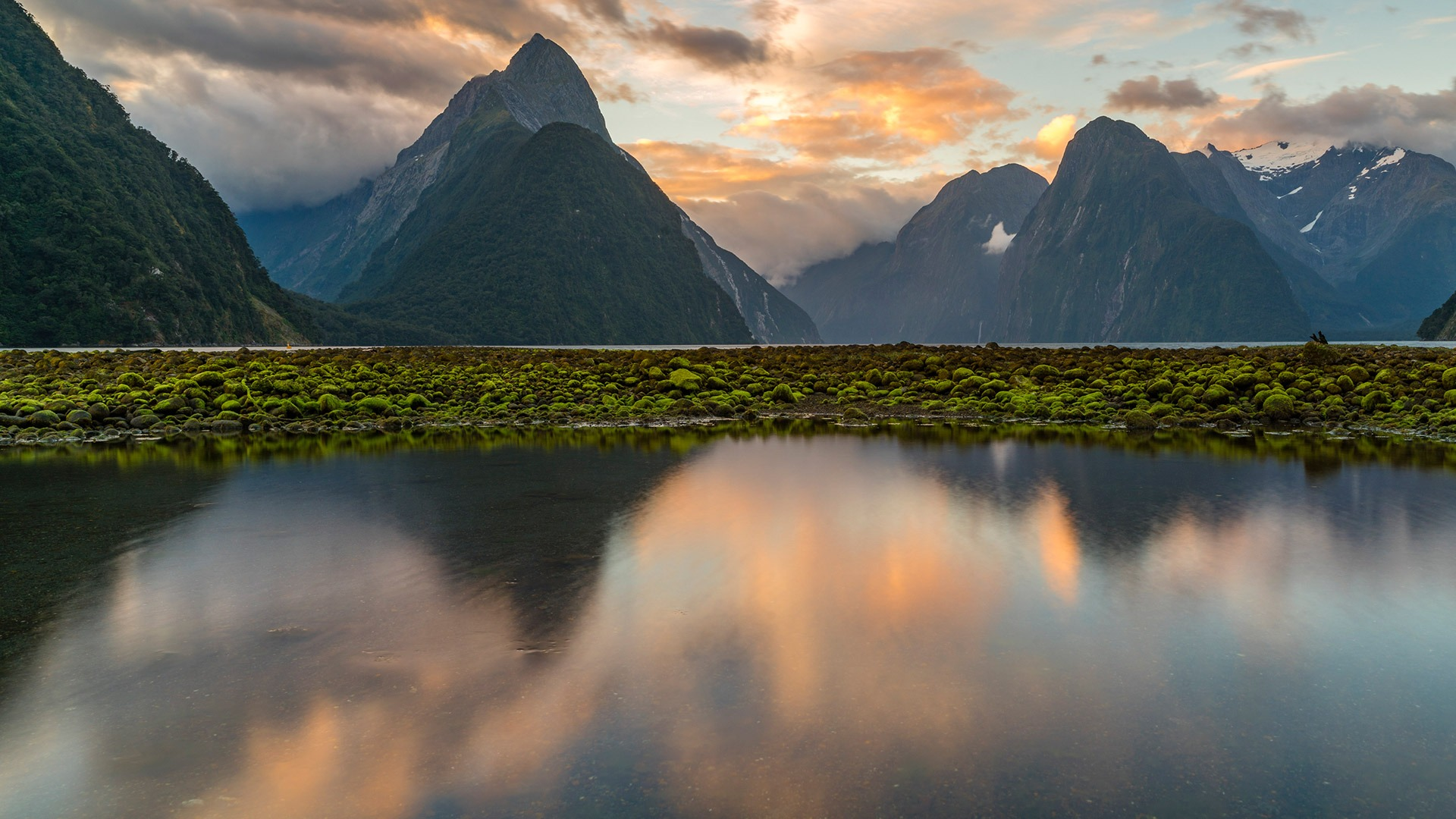Reflection of Milford Sound at sunset, Fiordland National Park, New Zealand