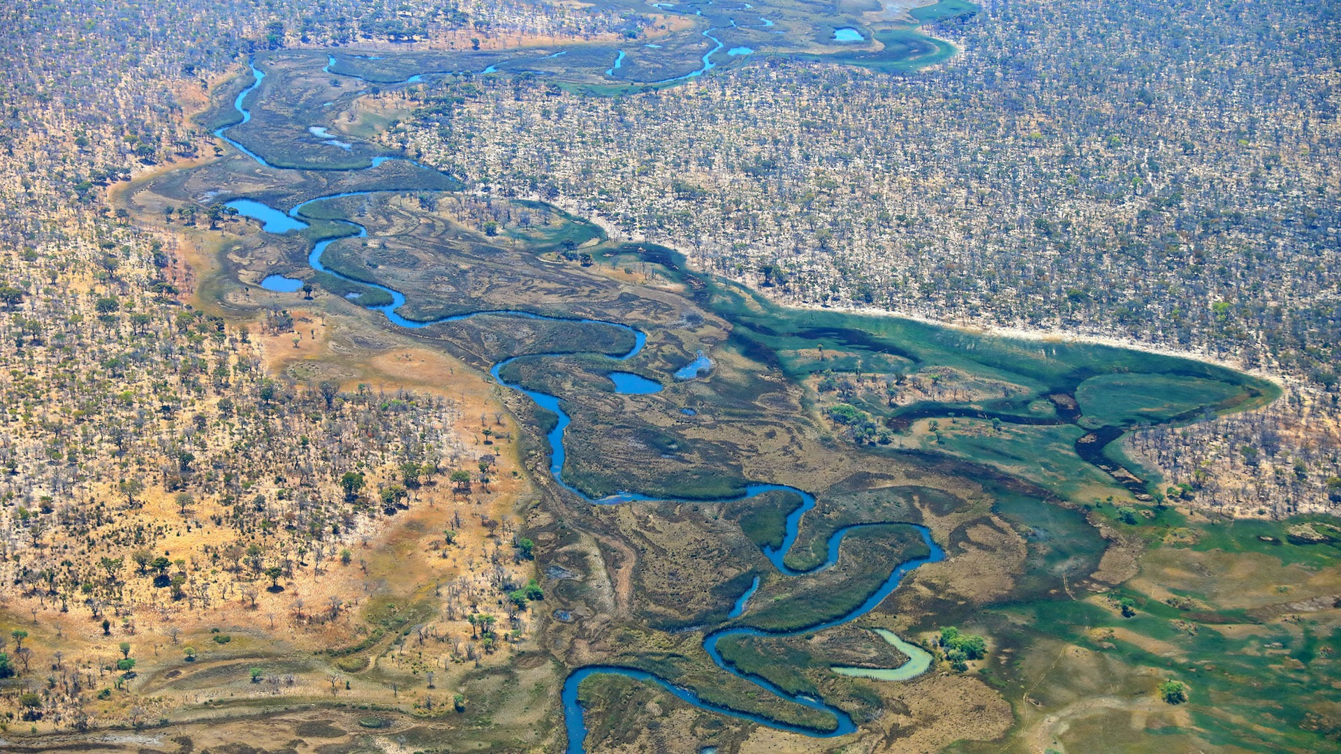 An aerial view of the woodlands and floodplains of the Cuatir Conservation Area, Angola