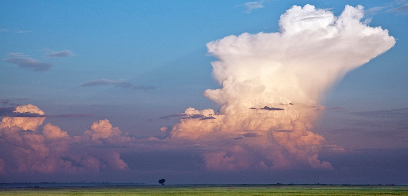A large cumulonimbus cloud forms over Lake Victoria, Kenya