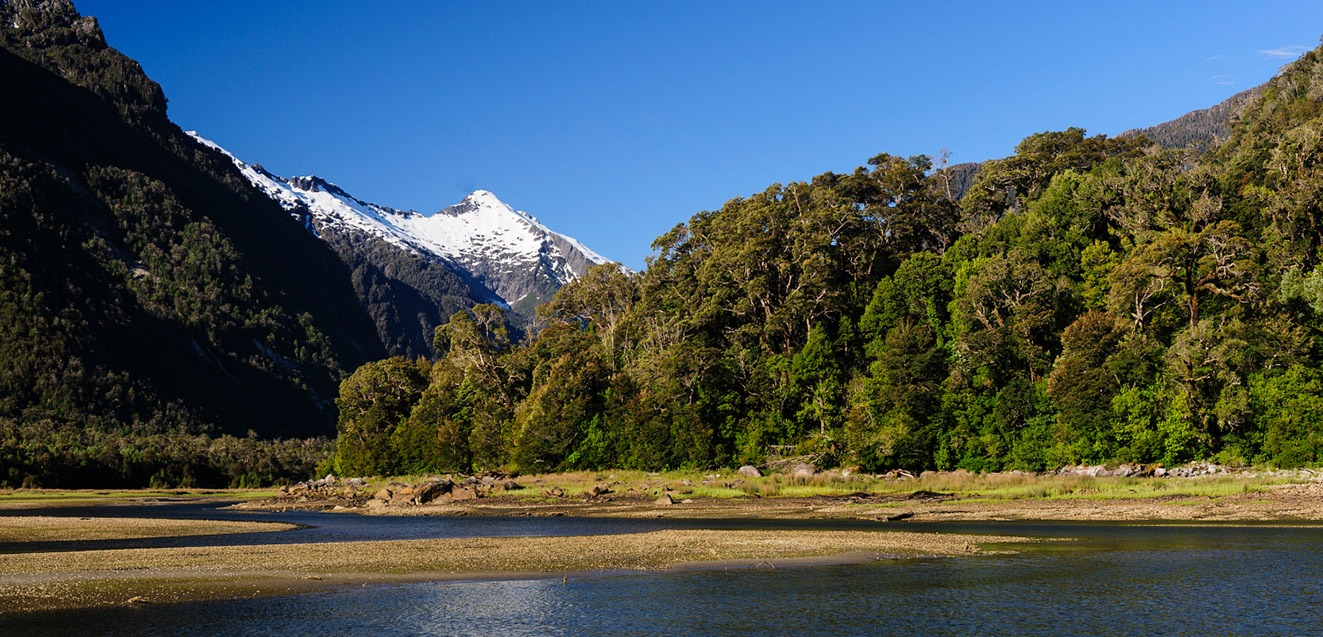 Snowcapped peaks and Valdivian rain forest in Pumalin Park, Chile's Route of Parks