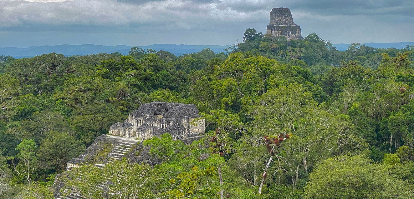 Temple 4 rising above the jungle canopy in Tikal, Guatemala