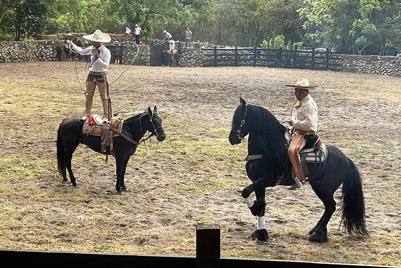 Cowboys display their horse riding prowess at a charreada rodeo in Comala, Mexico